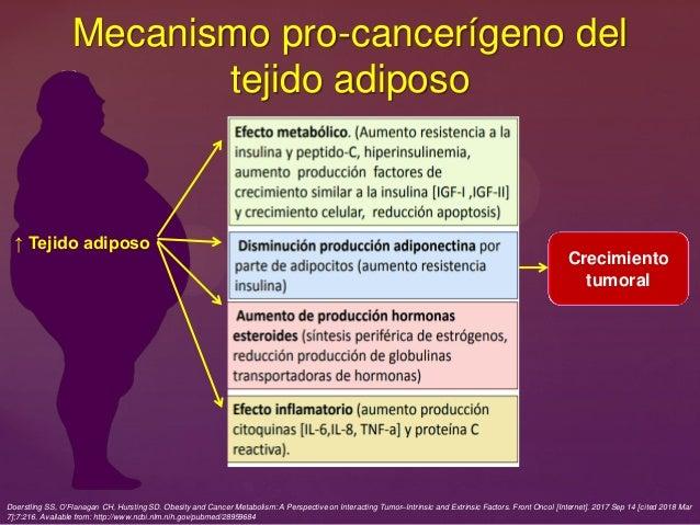 Mecanismo pro-cancerígeno del tejido adiposo ↑ Tejido adiposo Crecimiento tumoral Doerstling SS, O'Flanagan CH, Hursting S...