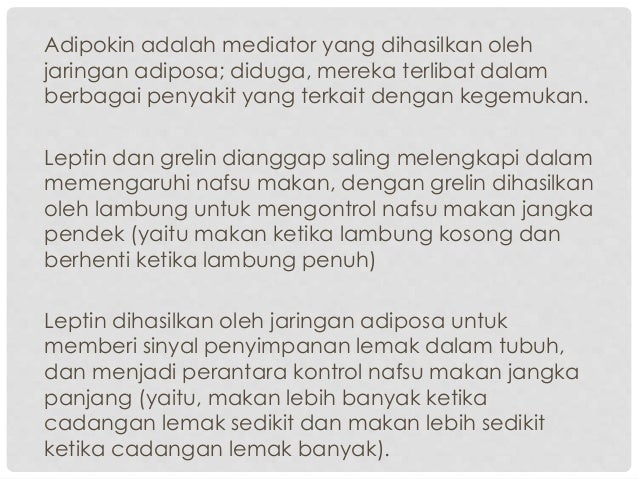 Indonesia Alami Obesitas Regulasi, Ini Solusi Seskab