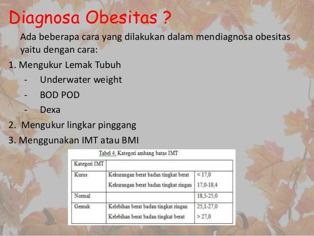 Ini Penyebab dan Risiko Obesitas pada Anak