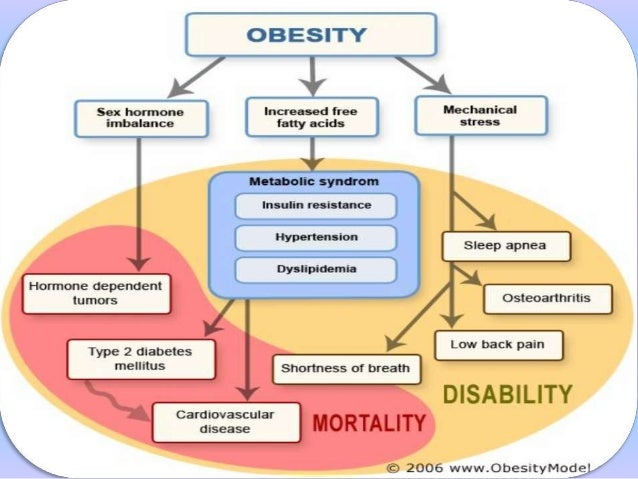 the cause and effect on obesity Cause and effect essay about obesity - receive an a+ aid even for the hardest assignments find out everything you need to know about custom writing proposals and essays at most affordable prices.