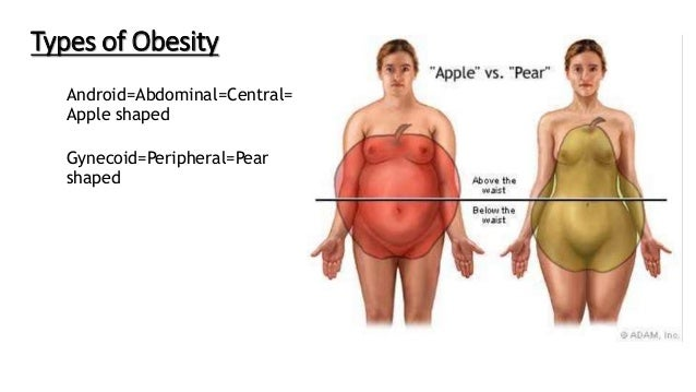 Obesity Pathology