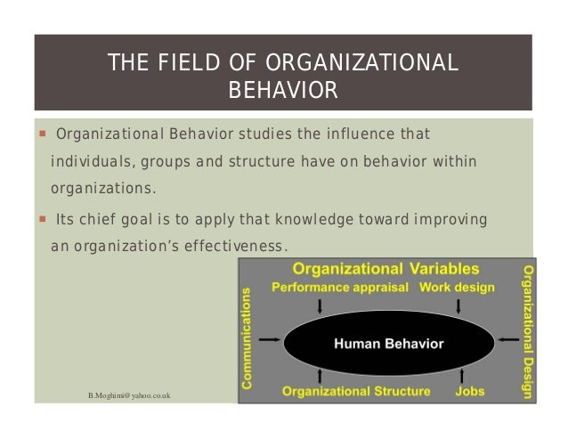 challenges of a manager in applying ob concepts Challenges and opportunities of organizational behavior  the application of new technology and industries best practices will enable quantum improvement .