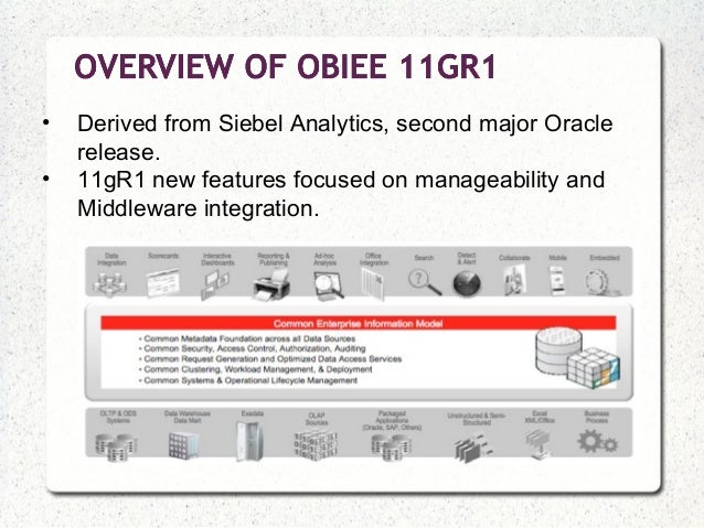 Oracle 10g commands
