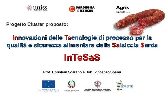 Progetto Cluster proposto: Prof. Christian Scarano e Dott. Vincenzo Spanu