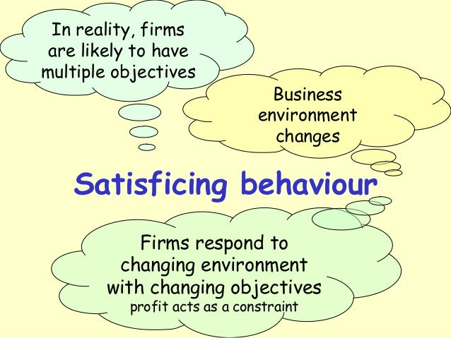 profit maximisation and business behavioural patterns This tension may explain a need to move away from the view that profit maximisation is the rational goal of organisations when engaging in procurement, as it cannot readily explain the motives impacting on the purchasing behaviours of small firms.