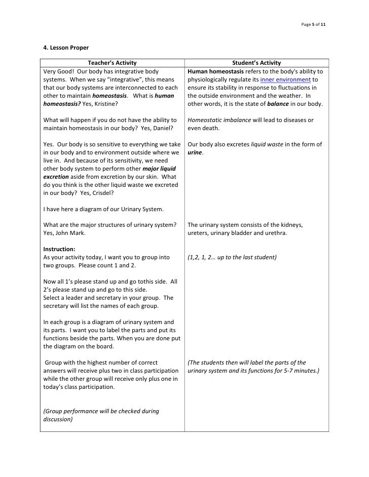 Objectives Of Lesson Plan Urinary System