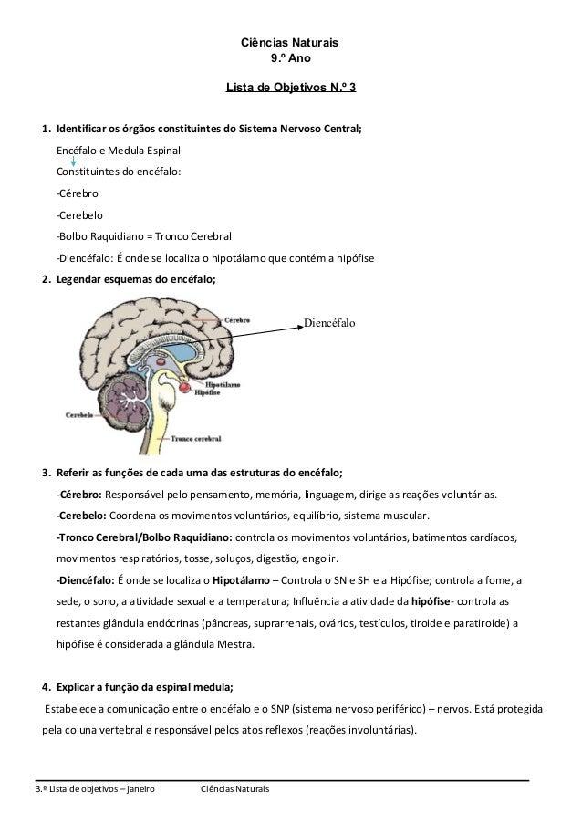 Ciências Naturais 9.º Ano Lista de Objetivos N.º 3 1. Identificar os órgãos constituintes do Sistema Nervoso Central; Encé...