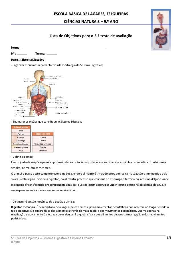ESCOLA BÁSICA DE LAGARES, FELGUEIRASESCOLA BÁSICA DE LAGARES, FELGUEIRAS CIÊNCIAS NATURAIS – 9.º ANOCIÊNCIAS NATURAIS – 9....