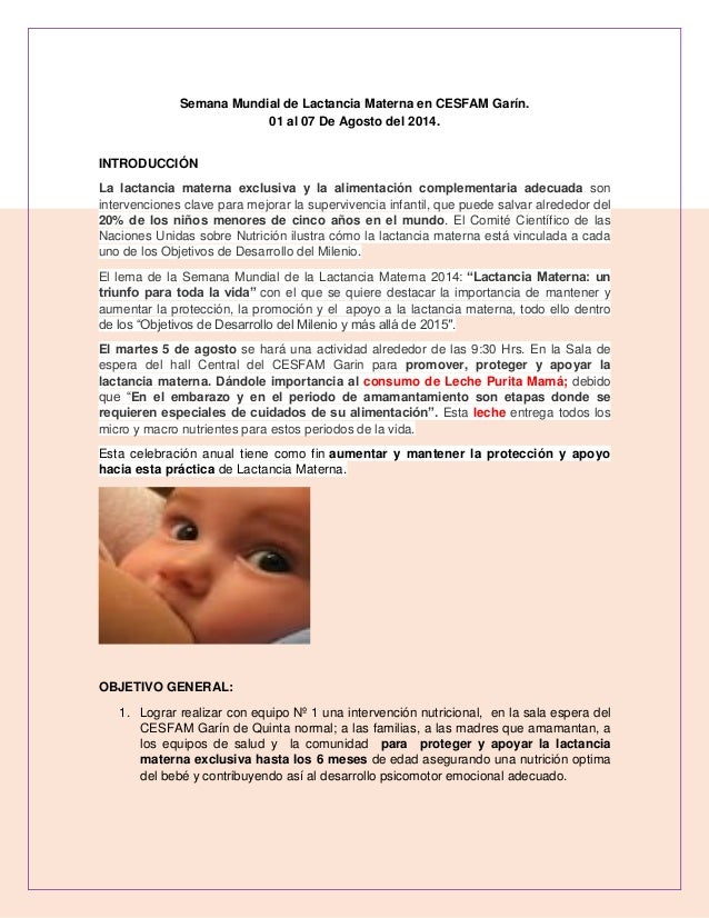 Objetivos semana mundial lactancia materna (1)