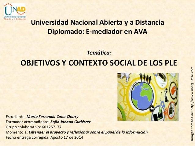 Estudiante: María Fernanda Cobo Charry Formador acompañante: Sofía Johana Gutiérrez Grupo colaborativo: 601257_77 Momento ...