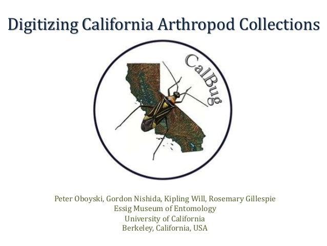 Digitizing California Arthropod Collections Peter Oboyski, Gordon Nishida, Kipling Will, Rosemary Gillespie Essig Museum o...