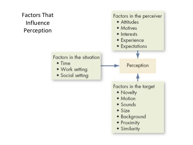 define the fundamental attribution error and explain how it distorts social perception Fundamental attribution error error is most visible when people explain and assume over and the attribution is made based on the perception.