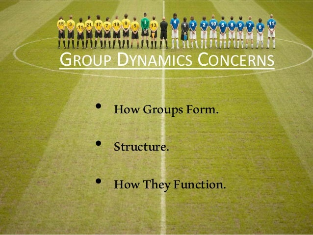 GROUP DYNAMICS CONCERNS • HowGroupsForm. • Structure. • HowTheyFunction.
