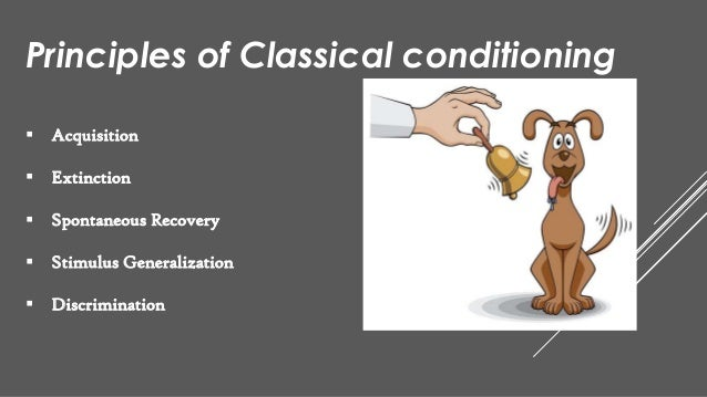 Principles Of Data Acquisition Experiment : Classical conditioning by ivan pavlov