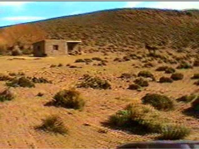 Obra misionera de Rhema Ministerios entre los Mapuches