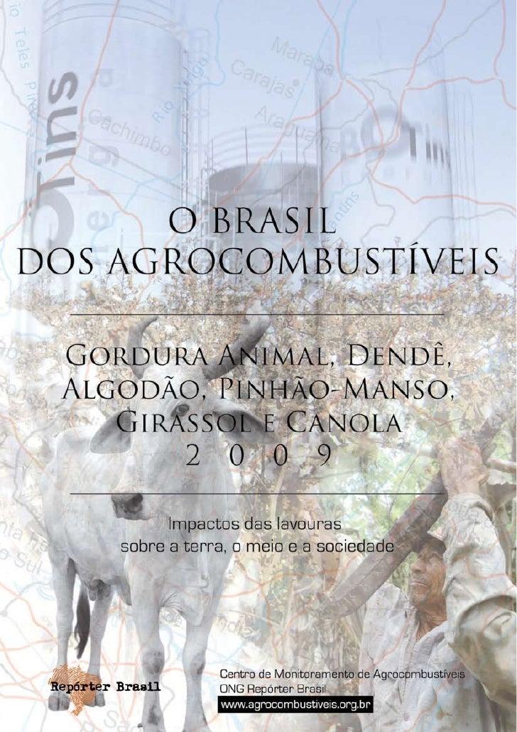 GORDURA ANIMAL, DENDÊ, ALGODÃO, PINHÃO-MANSO, GIRASSOL E CANOLA                                       Este quinto relatóri...
