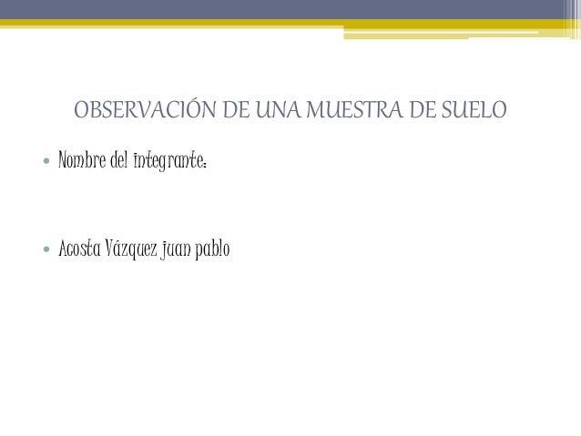 OBSERVACIÓN DE UNA MUESTRA DE SUELO • Nombre del integrante: • Acosta Vázquez juan pablo