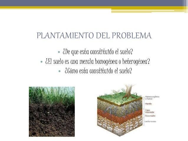 Observación de una muestra de suelo.pptxju  Slide 2
