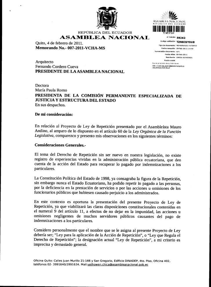 OBSERVACIONES AL PROYECTO DE LEY DE REPETICIÓN