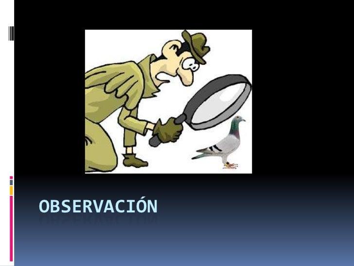 observacion participante ejemplo pdf
