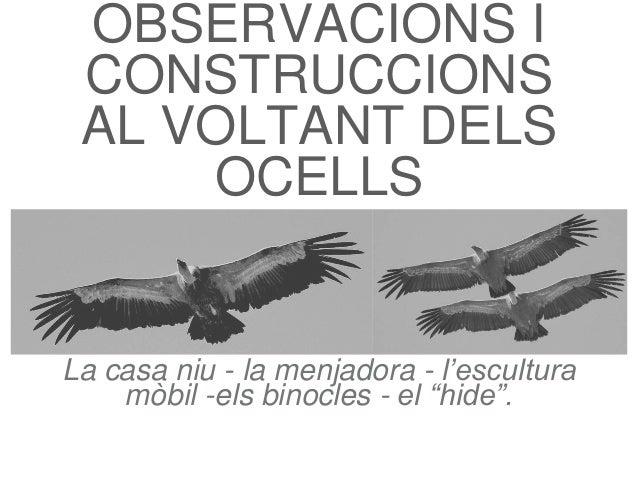 """OBSERVACIONS I CONSTRUCCIONS AL VOLTANT DELS OCELLS La casa niu - la menjadora - l'escultura mòbil -els binocles - el """"hid..."""