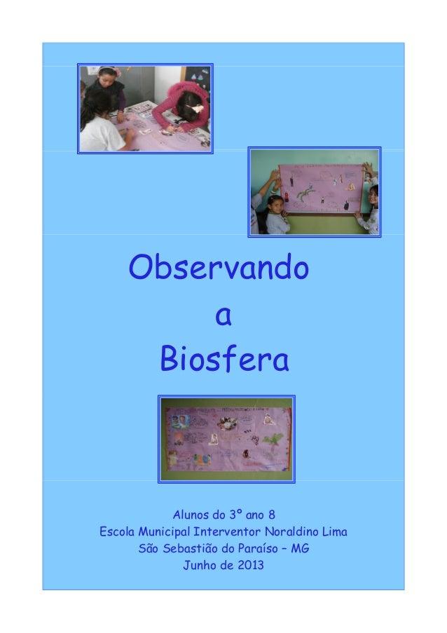 Observando a Biosfera Alunos do 3º ano 8 Escola Municipal Interventor Noraldino Lima São Sebastião do Paraíso – MG Junho d...
