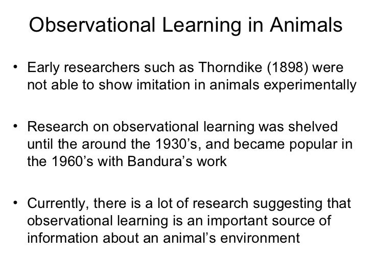 Observational learning.