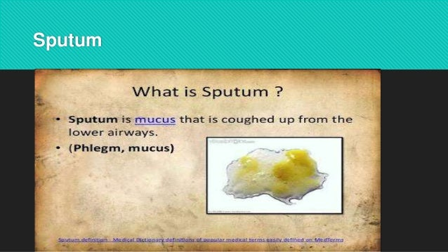 observation of stools, urine, and sputum, Skeleton