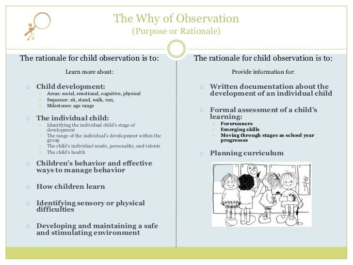 two years child development observation report To the substantial gaps observed in children's early lan- guage and cognitive   their developmental potential in the early years and  world development  report 2015 interaction  those who have established a foundation in multiple.