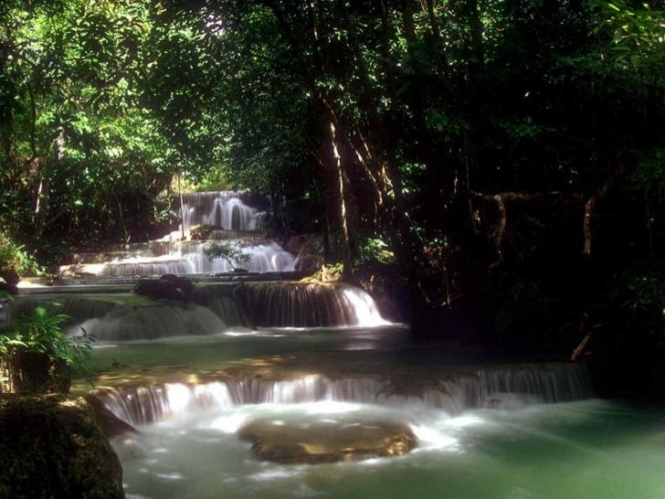 Observe a cachoeira