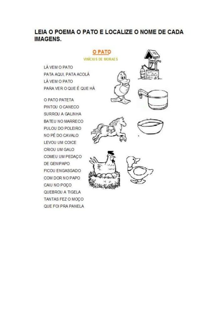 Atividades Com O Poema O Pato Vinicius De Morais