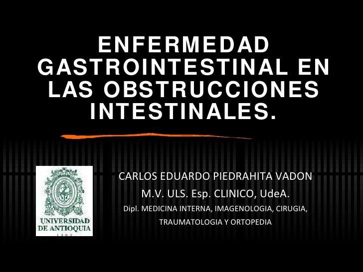 ENFERMEDAD GASTROINTESTINAL EN LAS OBSTRUCCIONES INTESTINALES. CARLOS EDUARDO PIEDRAHITA VADON M.V. ULS. Esp. CLINICO, Ude...