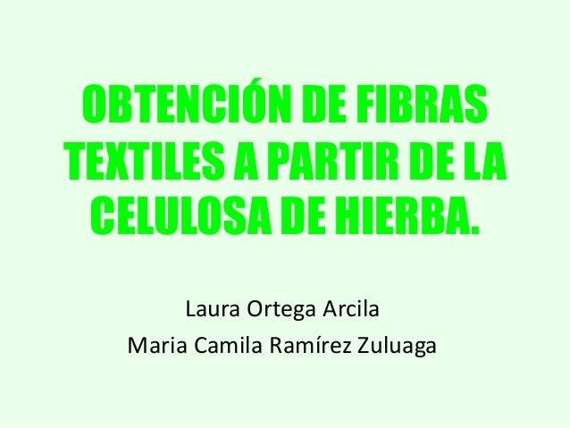 OBTENCIÓN DE FIBRAS TEXTILES A PARTIR DE LA CELULOSA DE HIERBA. Laura Ortega Arcila Maria Camila Ramírez Zuluaga