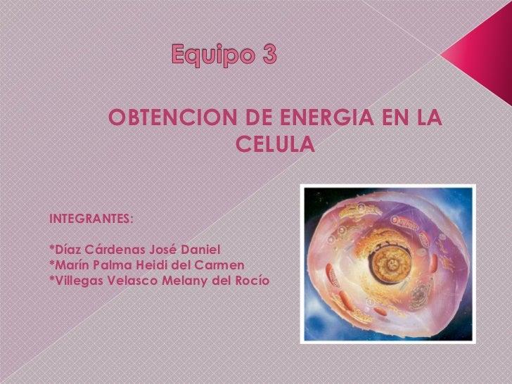 Equipo 3<br />OBTENCION DE ENERGIA EN LA CELULA<br />INTEGRANTES:<br />*Díaz Cárdenas José Daniel<br />*Marín Palma Heidi ...
