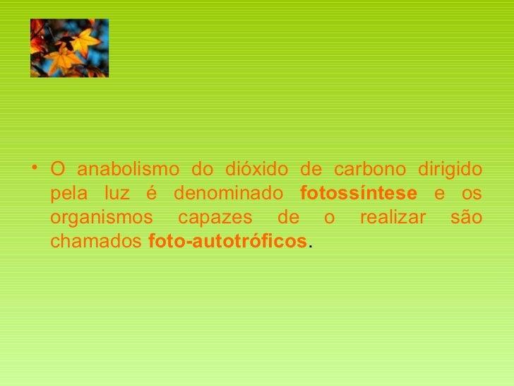 <ul><li>O anabolismo do dióxido de carbono dirigido pela luz é denominado  fotossíntese  e os organismos capazes de o real...