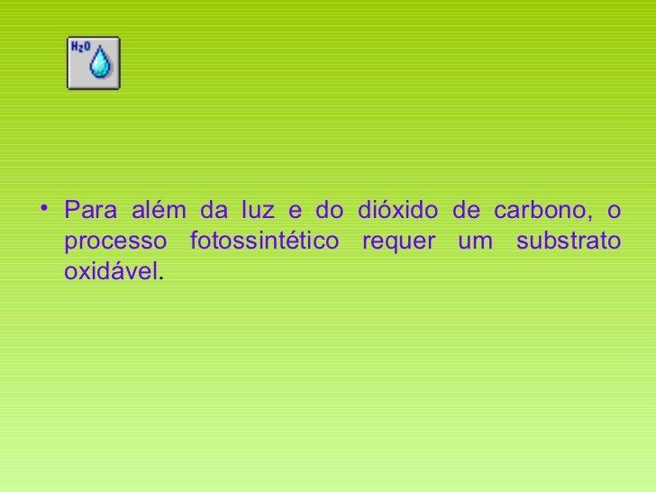 <ul><li>Para além da luz e do dióxido de carbono, o processo fotossintético requer um substrato oxidável . </li></ul>