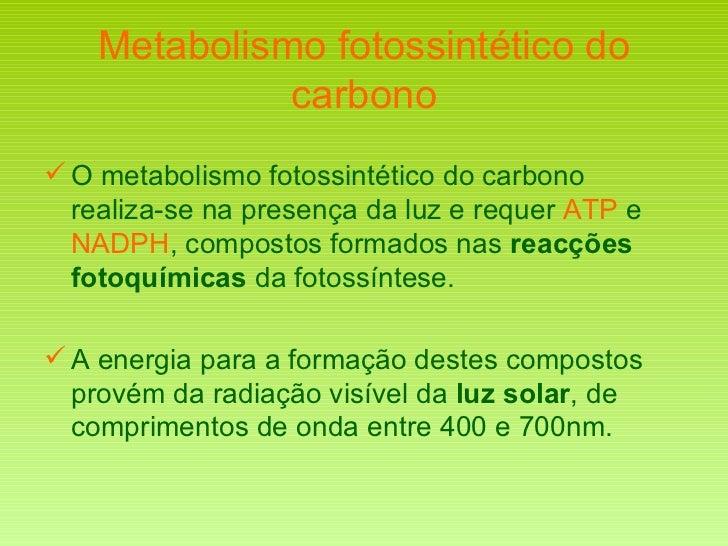 Metabolismo fotossintético do carbono <ul><li>O metabolismo fotossintético do carbono realiza-se na presença da luz e requ...