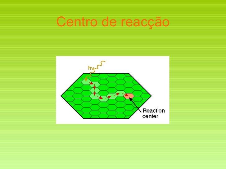 Centro de reacção