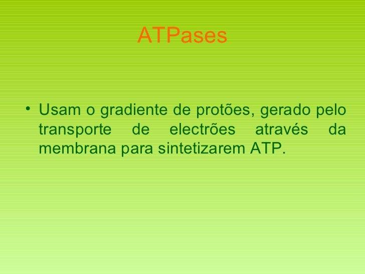 ATPases <ul><li>Usam o gradiente de protões, gerado pelo transporte de electrões através da membrana para sintetizarem ATP...