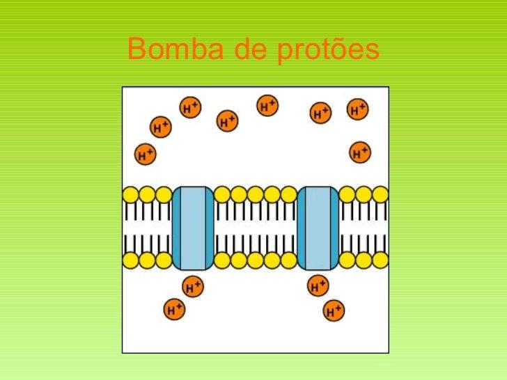 Bomba de protões