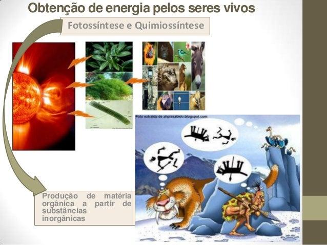 Obtenção de energia pelos seres vivos Fotossíntese e Quimiossíntese Produção de matéria orgânica a partir de substâncias i...