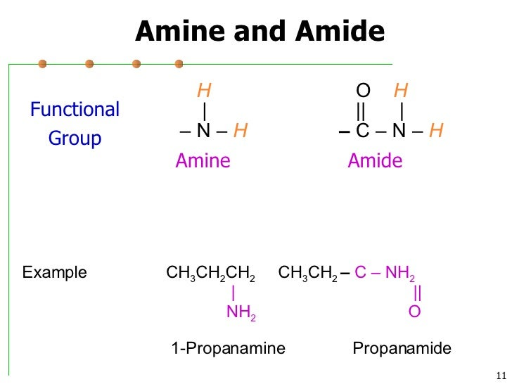 amines and amines Amine vs amide amines and amides are both nitrogenous organic compounds although they sound similar, their structure and properties are very different amine amines can be considered as.