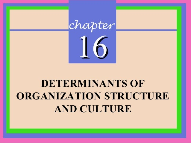 chapter 1616 DETERMINANTS OF ORGANIZATION STRUCTURE AND CULTURE