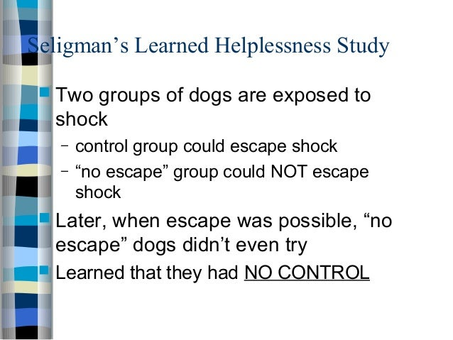 Chapter 9: Section 3: Learned Helplessness | AllPsych