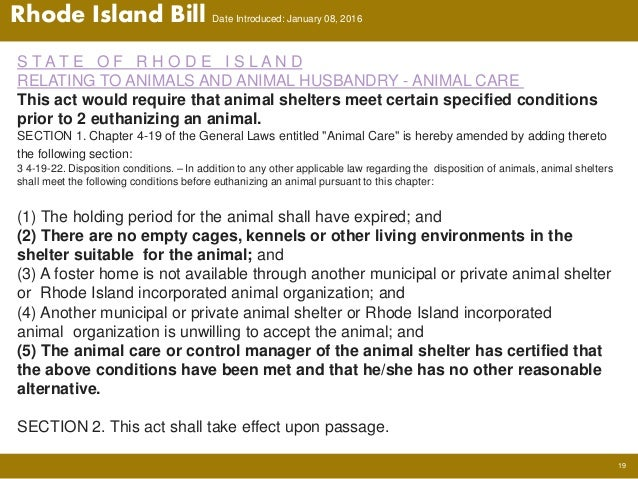 Kill Shelters In Rhode Island