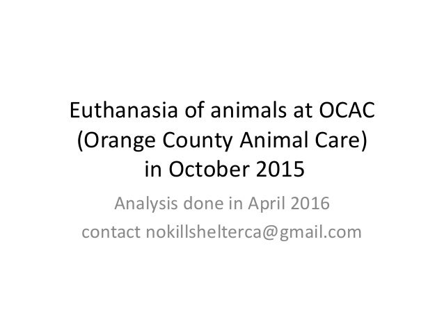 Euthanasia in nursing