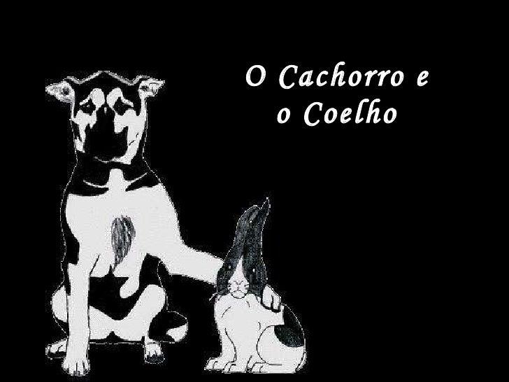 O Cachorro e  o Coelho