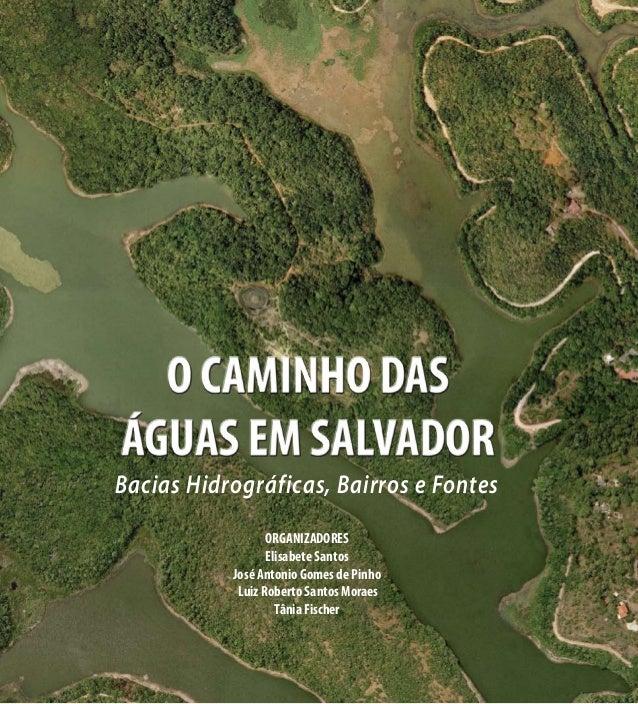 Bacias Hidrográficas, Bairros e Fontes ORGANIZADORES Elisabete Santos José Antonio Gomes de Pinho Luiz Roberto Santos Mora...