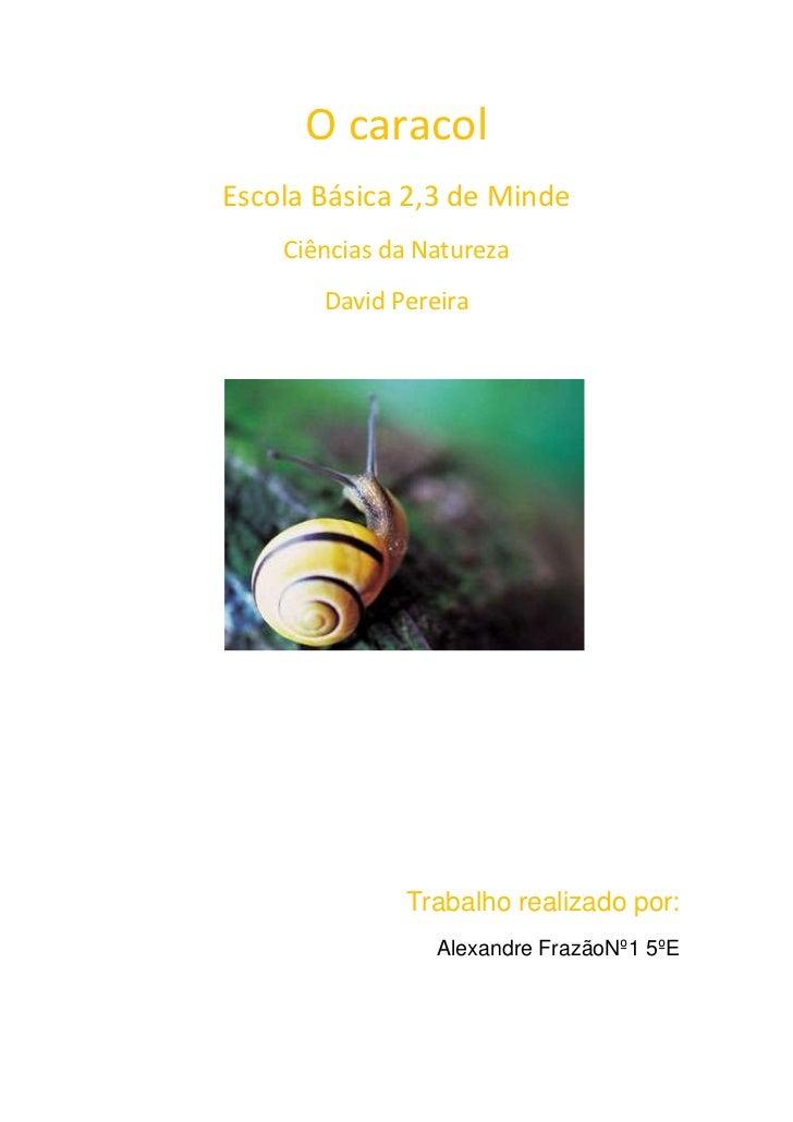 O caracolEscola Básica 2,3 de Minde    Ciências da Natureza       David Pereira              Trabalho realizado por:      ...