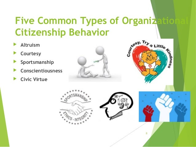 ocb organizational citizenship behavior How organizational citizenship behavior impacts companies how organizational citizenship behavior impacts companies written by oana florea on june 16, 2015 the more committed to the labor union an employee is, the less likely is to exhibit ocb at organizational level.